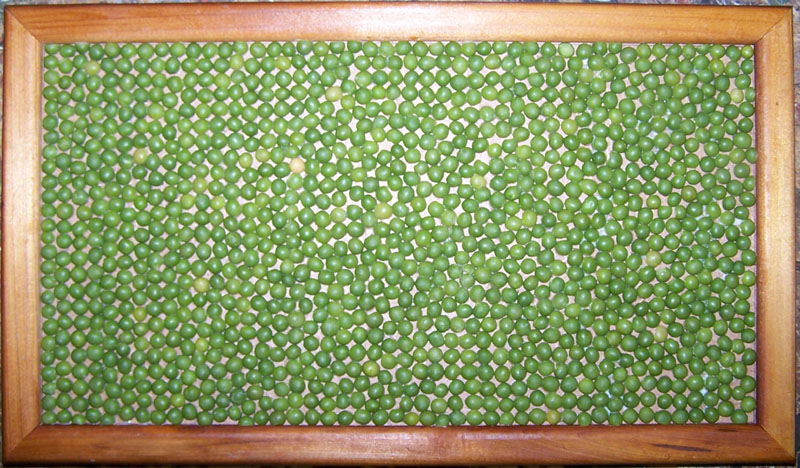 cobblestones_Green_split_peas.jpg