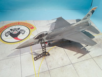 F16 with LP Models Ladder 2.jpg
