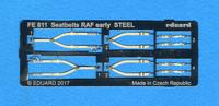 Seatbelts_RAF_PE.jpg