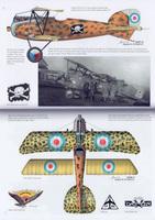 Yugoslav_Fighter_Colors_Image_1.jpg