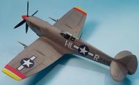 Hasegawa Spitfire Mk.VIII 1