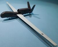 Miniwing 1/144 Northrop Grumman RQ-4 Global Hawk / USAF 1