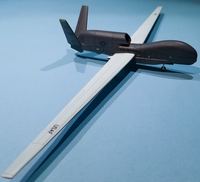Miniwing 1/144 Northrop Grumman RQ-4 Global Hawk / USAF 2