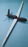 Miniwing 1/144 Northrop Grumman RQ-4 Global Hawk / USAF 3